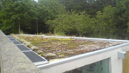 Handige adressen in Flevoland voor je dak